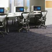 NFD Dublin Carpet Tiles Panther