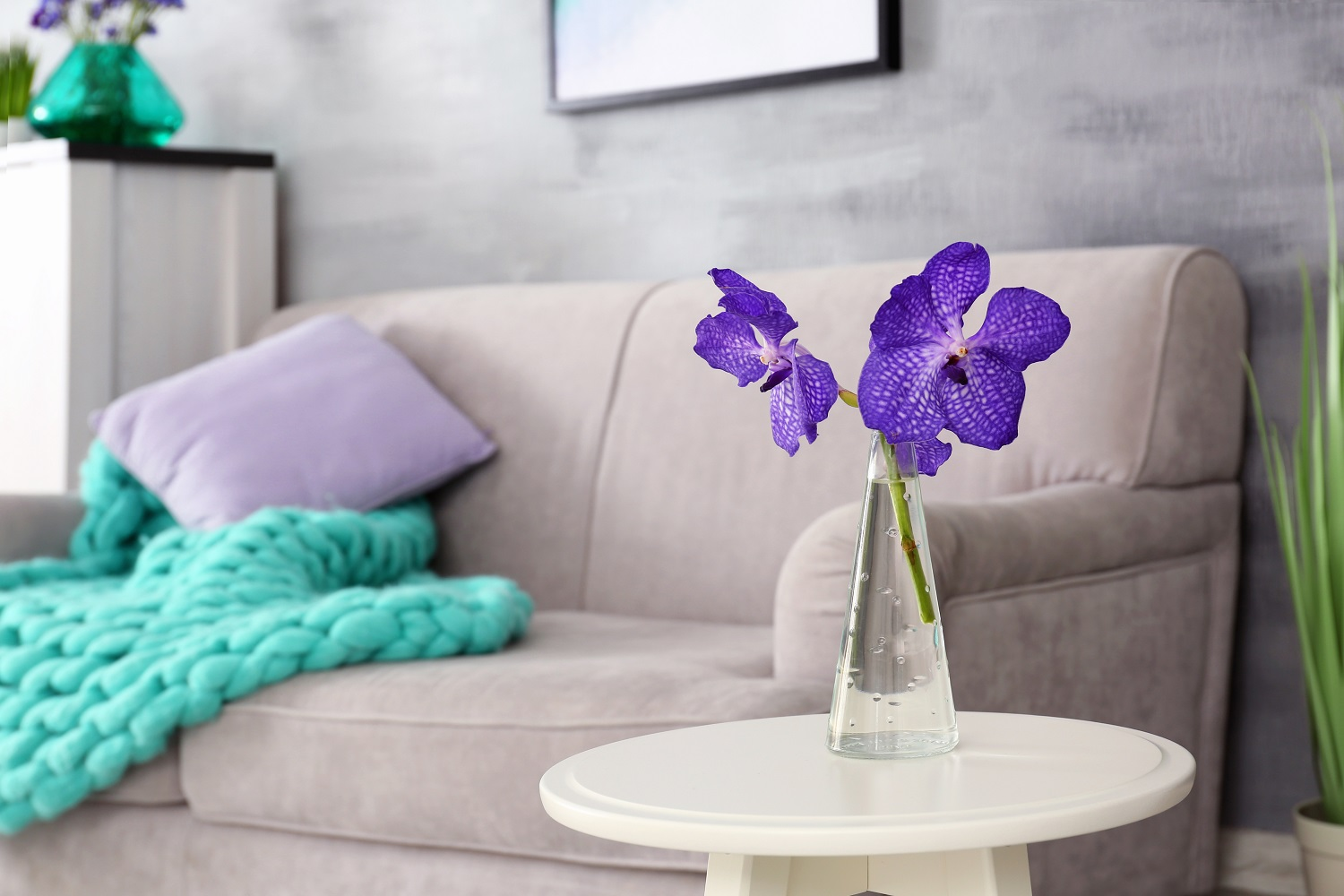 Purple creates a dramatic, sophisticated, rich feel