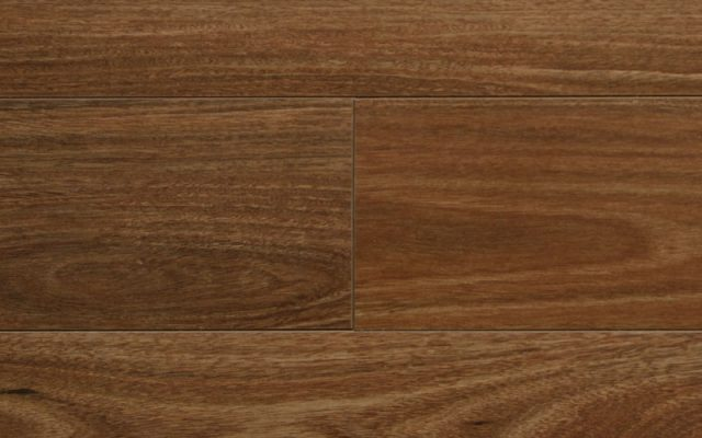 Signature Floors AquaPlank Peninsula XXL Flinders Spotted Gum