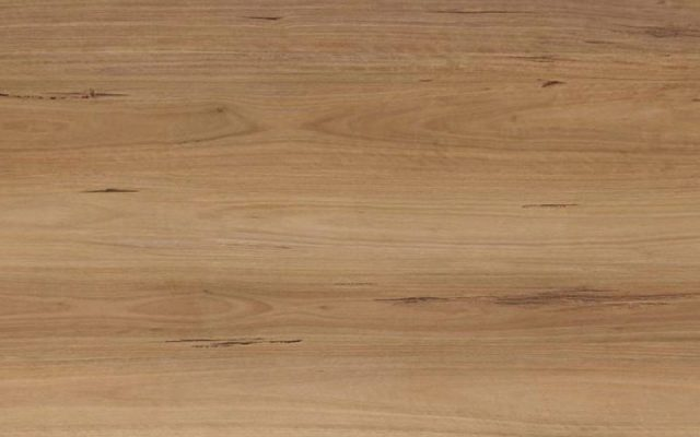 Desire Loose Lay Vinyl Planks Blackbutt
