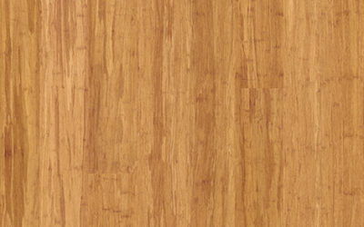 Premium Floors ARC Bamboo Champagne