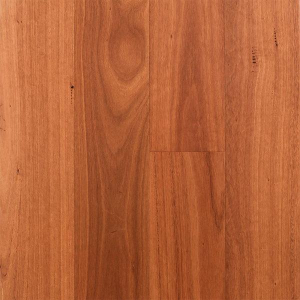Regency Advanced Engineered Timber Sydney Blue Gum